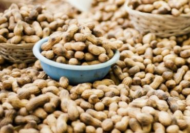 Peanut Market Report – January 2018
